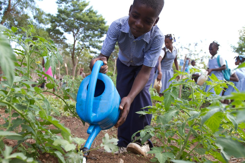 A student tends to a school garden in LaGonav, Haiti.